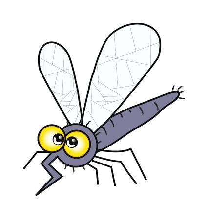 skin infections: Ilustraci�n de aislamiento de mosquito feliz de dibujos animados sobre fondo blanco