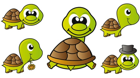 set of little happy turtles isolated over white background photo