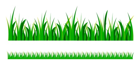 set illustration of green grass isolated over white background