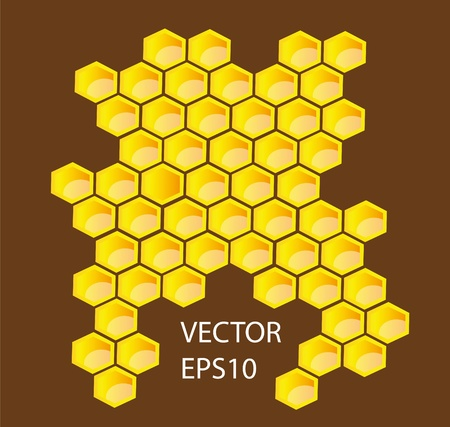 Vector honey combs background design elements Vector