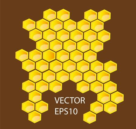 Vector honey combs background design elements Vector