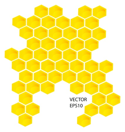 hive: Vector honey combs background design elements isolated over white background