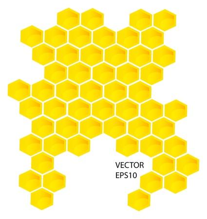 colmena: Vector panales elementos de fondo de diseño aislados sobre fondo blanco