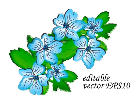 Vector creative hand-drawn watercolor flowers isolation over white background