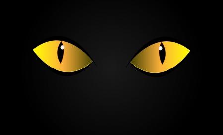 Vector cats eyes in dark night. Isolation. Illustration