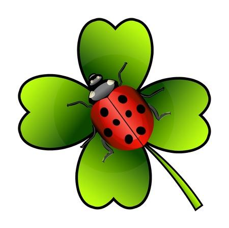 isolation: Vector ladybug on green clover. Isolation over white background.