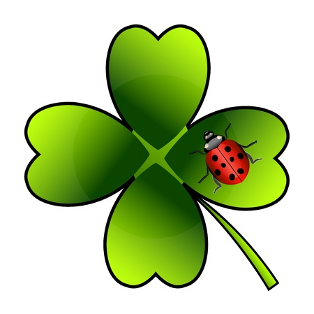 Vector ladybug on green clover  Isolation over white background  Vector