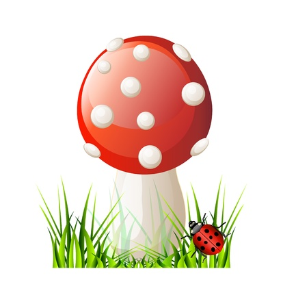 spores: Vector red mushroom. Isolation over white background.
