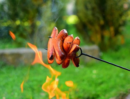 Detail of sausage over fire in garden in summertime. Food and meat theme. photo