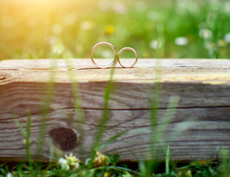 Two wedding rings on wood in garden. Love concept.