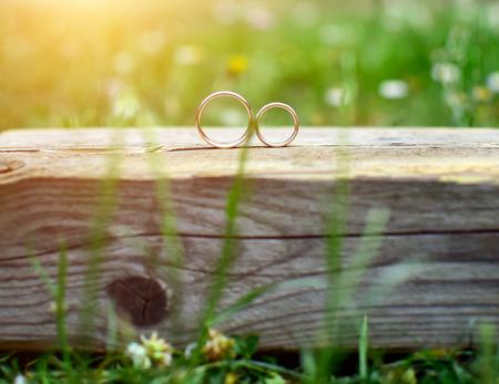 Dva snubní prsteny na dřevo v zahradě. Láska koncept. Reklamní fotografie