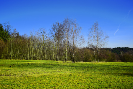 horrizon: HDR autumn or spring landscape with fields, forests and blue sky.