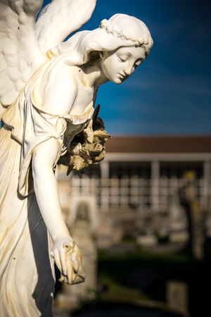 angel cemetery: Detail of statue of an angel in the cemetery