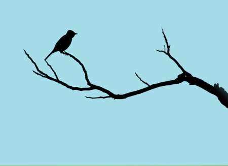tree branches: In the blue sky background, bird stop in the branches Stock Photo