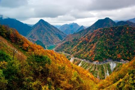 Beautiful autumn landscape in Shennongjia Mountains, Hubei, China 免版税图像
