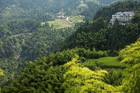 streamlet: China Wenzhou landscape - mountain scenery