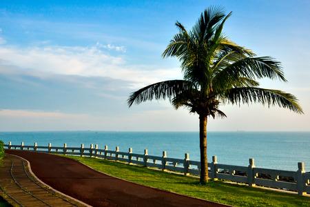 Tropical seaside scenery - taken in Hainan Island, China 免版税图像