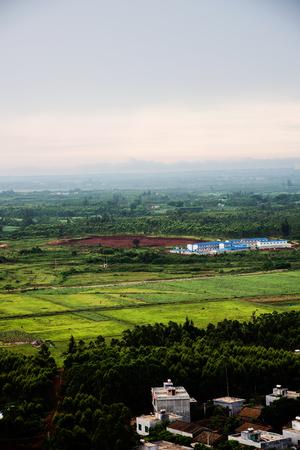 Morning wilderness ,Hainan Island China