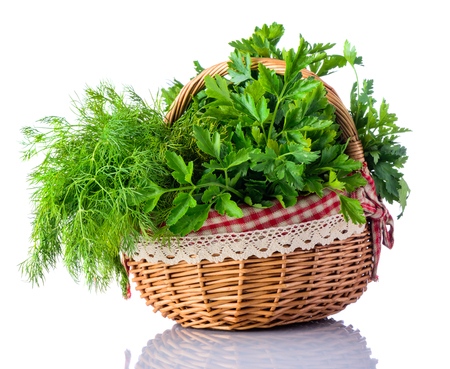 Dill and Parsley Green fresh cooking herbs in picnic basket isolated on white background Stock Photo - 54095755