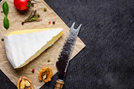 cheese knife: Camembert Cheese with cheese Knife, seasoning and spices with coy Space