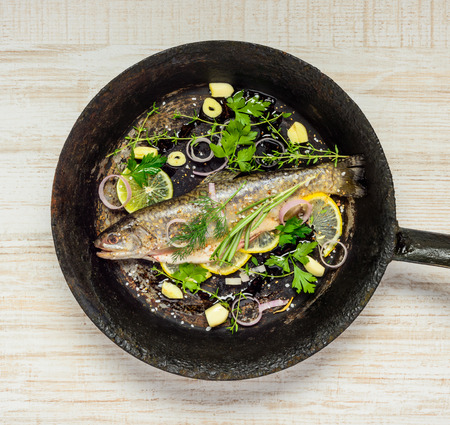 rainbow trout: Rainbow Trout Fish Seasoned and Spiced with Herbs and Cooking Ingredients in Frying Pan