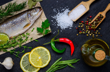 rainbow trout: Raw Rainbow Trout with Cooking herbs and Ingredients.