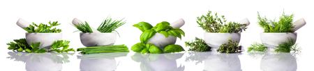 Verse groene organische kruiden in stamper en mortel geïsoleerd op een witte achtergrond