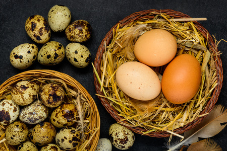 quail nest: Organic Quail and Chicken Eggs in Nest and on Dark Background