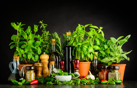 Still Life with Different Herbs, Kitchen Utensils and Condiments on Dark Background Stock Photo
