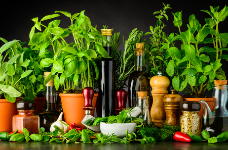 Sill Life with Cooking Ingredients, Fresh Green Basil and Parsley Herbs, Pestle and Mortar with Mezzaluna Herb Chopper Kitchen Utensils Stock Photo - 80030781