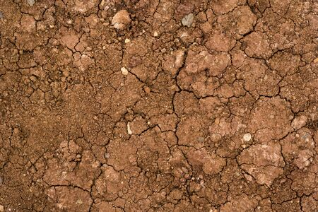 Texture of dried cracked clay. Macro background image of dried clay