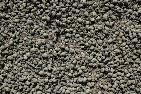 Texture of lifeless river dried river bed. Background image. Macro photo. Фото со стока