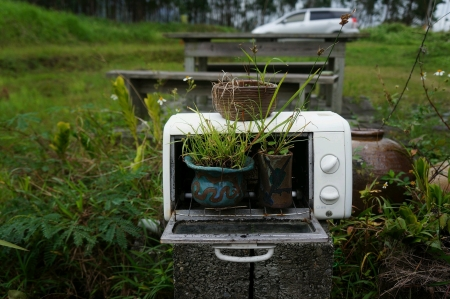 Reuse and recycle a microwave as garden decoration