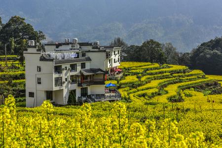 Mountain scenery in Wuyuan, Jiangxi, China