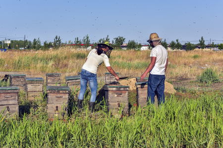 Tangshan City, Hebei Province, China - May 27, 2019 : Two beekeepers are harvesting honey.