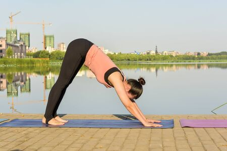 Yoga exercise for fitness women and relaxation and sportswear in green parks in summer, healthy lifestyle concept Stock Photo