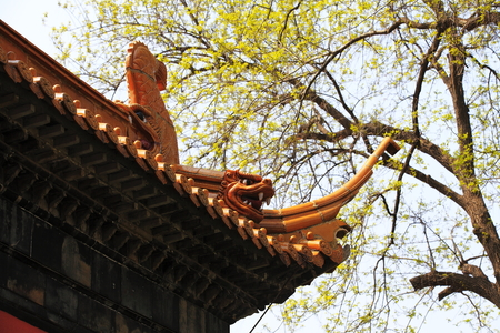 Ancient Architectural Building eaves
