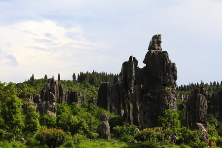 stone forest scenery in Yunnan
