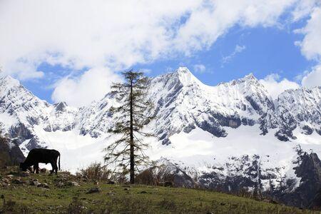 Yutu Peak scenery