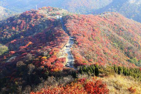 Tourists enjoy autumn along mountain highway road