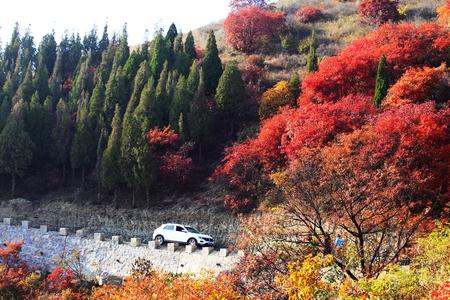 Tourists enjoy autumn along mountain road