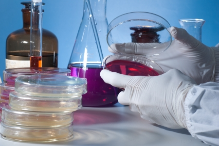 Microbiology Experiment Stock Photo - 17833440
