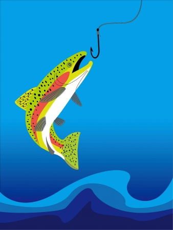 a trout Stock Vector - 20489476