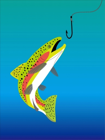 a trout Stock Vector - 20489483