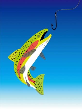 a trout Stock Vector - 20489481