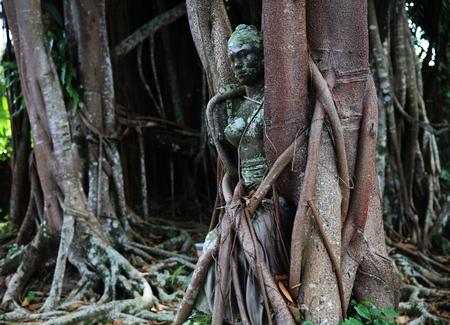 ubud: Banyan trees and statue in Ubud, Bali