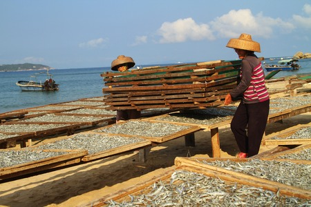 singular: Sanya City, Hainan province China Haitang Bay scenery. The national coast Haitang Bay thousands of images, set blue sea, blue sky, green, silver sand, oasis, singular point, the river in a body. Figure for the fishermen fish drying scene.