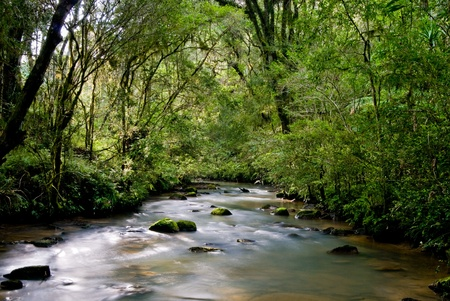flowing river: River with rocks and moss in the Brazilian Atlantic rainforest. Stock Photo