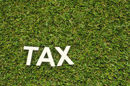 image concept word tax made froom wood on artificial grass Stock Photo