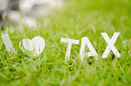 balanced budget: closeup view white wood alphabet i love tax symbol on green grass